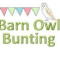 Barn Owl Bunting