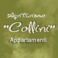 Agriturismo Collini e Pizzeria Al Torchio