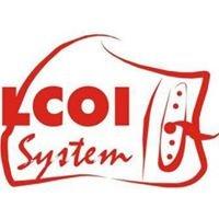 Lokalne Centra Obsługi Inwestora LCOI - Eastern European Gateway