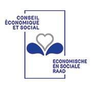 Conseil économique et social de la Région de Bruxelles-Capitale