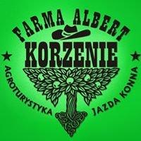 Farma Albert Korzenie - agroturystyka, jazda konna w Pruchniku