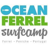 Ocean Ferrel Surf Camp