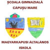 Școala Gimnazială Căpușu Mare - Magyarkapusi Általános Iskola