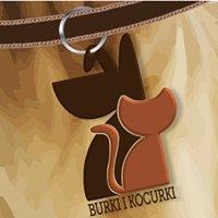 Burki i Kocurki - Wolontariat na Rzecz Skrzywdzonych i Porzuconych Zwierząt