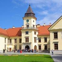 Zamek Dzikowski w Tarnobrzegu