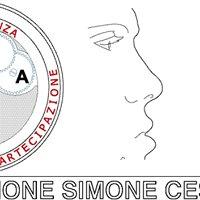 Fondazione Simone Cesaretti