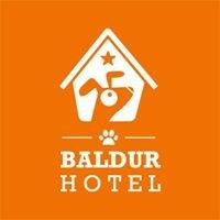 Hotel dla psów Baldur