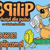 """Hotel dla psów """"Pilip"""" w Sulechowie"""