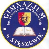 Gimnazjum im. Powstańców Wielkopolskich w Stęszewie
