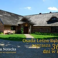 Bębnikąt - Osada Leśna Agroturystyka Noclegi Organizacja Imprez