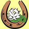 Jazda Konna » Noclegi » Imprezy Plenerowe » Obozy » Dwa Stawy Sulejów
