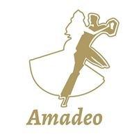 Rezydencja Amadeo