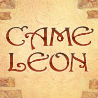 Salon Cameleon