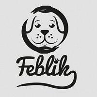 Feblik - szkolenie i terapia behawioralna psów