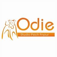 ODIE Studio Psich Fryzur