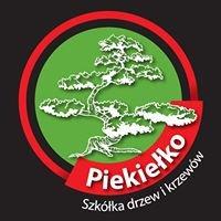 Szkółka Drzew i Krzewów Piekiełko
