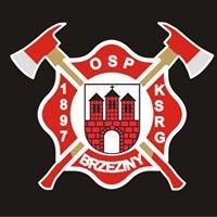 Ochotnicza Straż Pożarna w Brzezinach