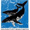Dolphin Fleet Whale Watch