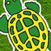 Green Turtle Bay Resort