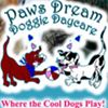 Paws Dream Doggie Daycare