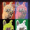 Alpaca Culture