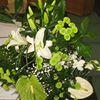 Užupio gėlės