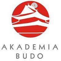 Akademia Budo - Karate dla wszystkich