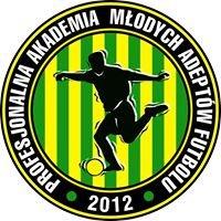 PAMAF - Profesjonalna Akademia Młodych Adeptów Futbolu