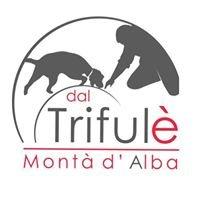 Dal Trifulè