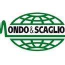 Mondo & Scaglione s.r.l.