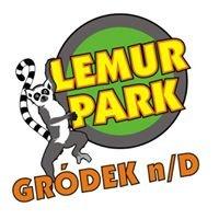 Lemur Park Linowy Gródek