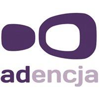 adencja - agencja interaktywna