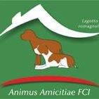 Animus Amicitiae FCI