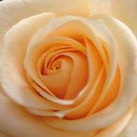 Hovdestalunds Blommor