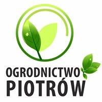 Gospodarstwo i Centrum Ogrodnicze Piotrów