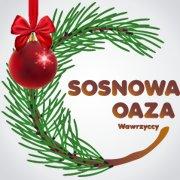 Sosnowa Oaza - Baranów Sandomierski