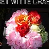 Het Witte Gras Shop