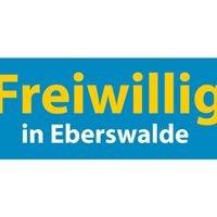 Freiwillig in Eberswalde