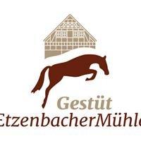 Gestüt Etzenbacher Mühle