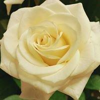 Askersund Blommor och Blad