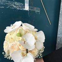 Toves Blommor
