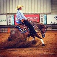 Morgan Stables Performance Horses