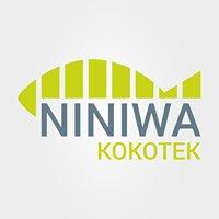 Oblackie Centrum Młodzieży NINIWA w Kokotku