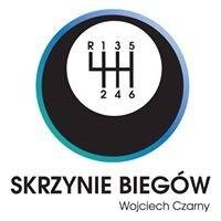 Skrzynie Biegów Wrocław Czarny Wojciech