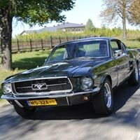 Mustang Racing
