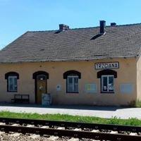 Stacja Trzciana
