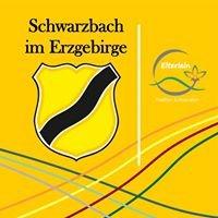 Schwarzbach im Erzgebirge