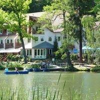 Hotel, Gasthaus & Cafe Haus am See Schleusingen