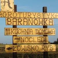 "Pensjonat ""Dworek Baranówka"""