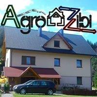 AgroZibi-Dom wypoczynkowy w Górach